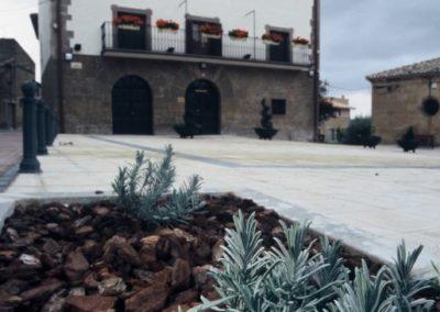 0. Foto testigo. Plaza del Ayuntamiento. Lander Goni (Barasoain)