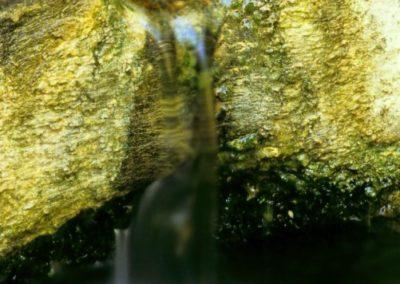 Fuente huerta Ciriza. Lander Goni (Arizkun)
