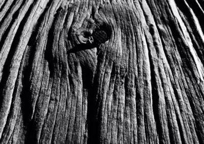Prueba 2. La madera. MIKEL VALENCIA. Pamplona